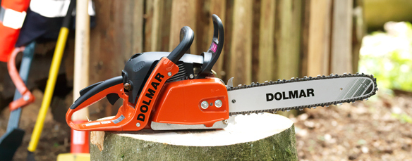 Dolmar Chainsaws Any Good - saw palmetto for bph